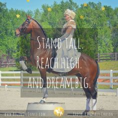 Learn how to ride bitless and teach your horse amazing tricks this year! click here