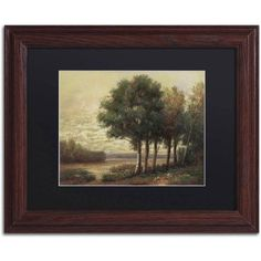 Trademark Fine Art Tranquility Canvas Art by Daniel Moises, Black Matte, Wood Frame, Size: 11 x 14, Brown