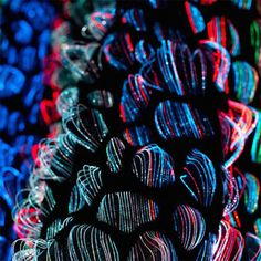 Glowing Textile Creation by Malin Bobeck