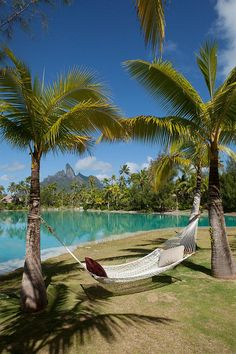 The St. Regis Bora Bora Resort—Hammock