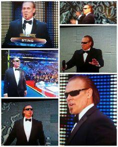 2016 WWE Hall Of Famer STNG