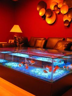 Nice 36 Marvelous Aquarium Feature On Coffee Table Design Ideas. Aquarium Design, Home Aquarium, Aquarium Setup, Tropical Aquarium, Aquarium Ideas, Fish Tank Table, Fish Tank Coffee Table, Coffee Table Aquarium, Fish Tank Design