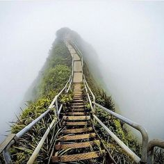 Stairway to heaven Location: Oahu Hawaii #AllAbandoned . Photo by @migueltoralba by allabandoned