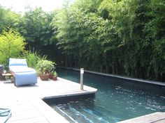 Real Estate, Beach House Vacation Rentals and Sales | Cherry Grove, Fire Island, NY