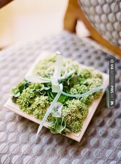 Brilliant! - planter ring pillow in a shadowbox! photo by | CHECK OUT MORE GREAT GREEN WEDDING IDEAS AT WEDDINGPINS.NET | #weddings #greenwedding #green #thecolorgreen #events #forweddings #ilovegreen #emerald #spring #bright #pure #love #romance