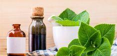 Borage Oil Benefits, Essential Oils For Eczema, Diabetes, Natural Skin Moisturizer, How To Treat Eczema, Dieta Detox, Arthritis Symptoms, Natural Health Remedies, Natural Treatments