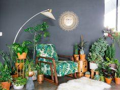 Haute Houseplants  Garden Design  Calimesa, CA