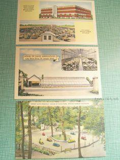 Vintage Postcards - Unused Unstamped - House of David Benton Harbor St. Joseph, MI Greenhouse Midget Auto Speedway Cold Storage City Market by AVintageLifeByNikki on Etsy