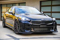 Kia Stinger, Infiniti Q50, Kia Motors, Sports Sedan, Automotive Photography, Sedans, Future Car, Car Stuff, Aston Martin