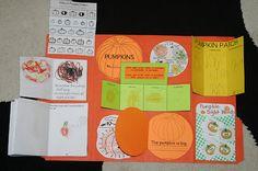 Pumpkins ~ Lapbook - 1+1+1=1