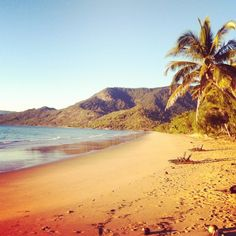 The perfect setting for a 7am run by @stuartflatt #instagram #TropicalNorthQueensland
