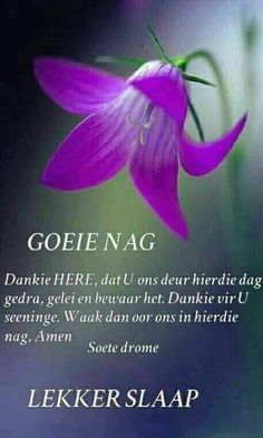 Evening Greetings, Good Night Greetings, Christmas Greetings, Healing Bible Verses, Evening Quotes, Afrikaanse Quotes, Goeie Nag, Special Quotes, Good Night Quotes