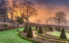 International Garden Photographer of the Year - Competition 10 | Beautiful Gardens Finalists