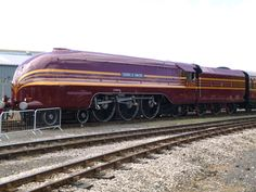 6229 Duchess of Hamilton at railfest Fire Breathing Dragon, Disused Stations, Cute Disney Drawings, Abandoned Train, Train Art, Steam Engine, Steam Locomotive, Model Trains, Travel Posters