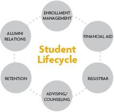 24 Student Life Cycle Ideas Student Life Student Life Cycles