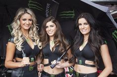 Monster Energy Grid Girls Superbikes Aug 2013 at Oulton Park