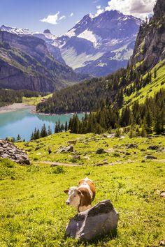 "czechthecount: "" Kandersteg, Switzerland by czechthecount: instagram   facebook   500px   society6 """