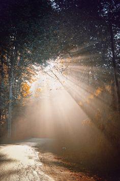 Sun Light by BahaDor TaghipOor on 500px