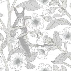 Toivo by Vallila - Grey - Wallpaper : Wallpaper Direct Botanical Wallpaper, Grey Wallpaper, Wallpaper Panels, Kids Wallpaper, Wallpaper Roll, Pattern Wallpaper, Beautiful Wallpaper, Animal Wallpaper, Buy Wallpaper Online