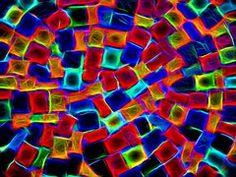 Neon - Ilmaisia kuvat Pixabayssa - 2