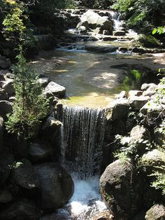 Mini Waterfall   Flickr - Photo Sharing!