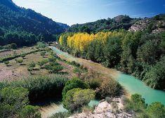 6 lugares hermosos que no puedes dejar de visitar en la provincia de Albacete. River, Outdoor, Beautiful Places, Sweetie Belle, Outdoors, Outdoor Games, The Great Outdoors, Rivers