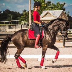 """ All a gal needs is a BLACK horse and a pair of RED TOP Boots "" !!"
