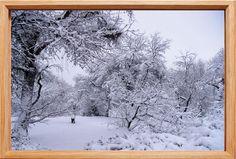 Wärmedämmung Snow, Outdoor, Wood Windows, Outdoors, Outdoor Games, The Great Outdoors, Eyes, Let It Snow