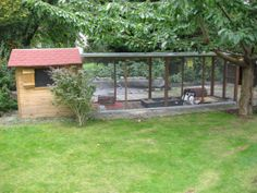 Ideal bunny home - Lots of space!