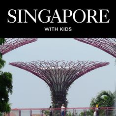 Singapore is packed with family-friendly activities and attractions and is a great place to take the kids. From the delicious food to the spectacular sights, you'll never run out of things to do. Don't wait to plan your next family trip to Singapore! Singapore With Kids, Great Places, Delicious Food, Family Travel, Attraction, Things To Do, Activities, How To Plan, Family Trips