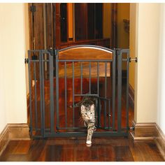 Carlson Pet Products Design Studio Walk Through Pet Gate with Small Pet Door