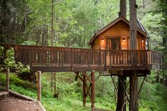 Image result for treehouses