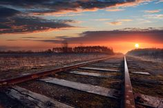 Beautiful Railroad Scene