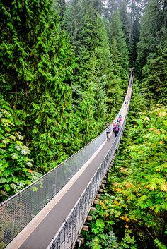 Capilano Suspension Bridge - Vancouver, BC, Canada