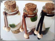 Marimo pet bottle by AnnikasWonderWorld on Etsy Marimo, Pet Bottle, Diy For Kids, Pets, Friends, Unique Jewelry, Handmade Gifts, Crafting, Amigos