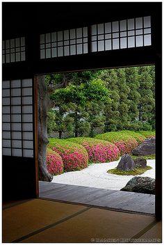 Blooming satsuki in Myoren-ji (妙蓮寺) and dry garden