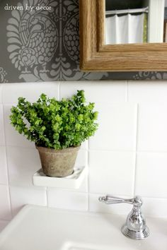 Driven by Decor - Bathroom toothbrush holder used as plant stand