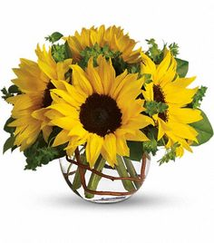 Sunflower Arrangements | Sunny Sunflowers delivered by delivered by San Luis Obispo Florist in ...