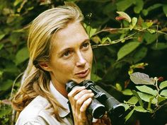 Dame Jane Goodall is one of the world's leading scientists. Find out more about Dame Jane Goodall on Superstars of Science Jane Goodall, Beautiful People, Beautiful Women, Beautiful Person, Beautiful Soul, Amazing Person, Amazing People, Chimpanzee, Strong Women