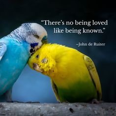 """""""There's no being loved like being known.""""–John de Ruiter Inspirational Quotes With Images, Wallpaper Backgrounds, Photo And Video, Videos, Photos, Instagram, Pictures"""