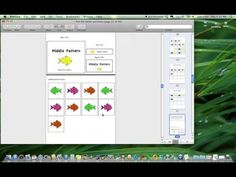 Video Product Preview for File Folder Activities to Match, Count, Sort, and More {Fish Themed} by theautismhelper.com.