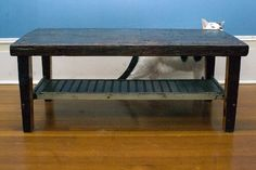 coffee table - comes with a cat