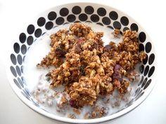 Raw homemade granola