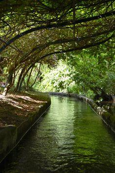 jardin d'acclimatation parisien campagnard
