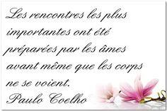 Citation de Paulo Coelho sur la rencontre des âmes