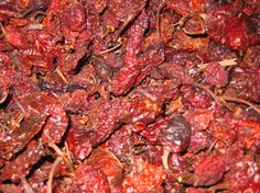 Bhut Jolokia (Ghost Chile) pods from Alamo City Pepper Products