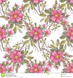 free vector rosy pattem - Yahoo Image Search Results
