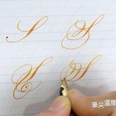 ✍️大寫S的變化練習!!筆具;Pilot 742FA研尖 #typography #ink #pen #penmanship #handwriting #handlettering #lettering #nib #design #type #finetec #英文書法 #西洋書法 #花體字 #instagood #copperplate #calligraphy #calligraphymasters