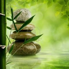 Natural Zen Hd Wallpapers Wallpaper 1200x1200PX ~ Wallpaper Hd Zen ...