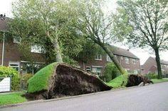 Storm 28-10-2013 Hoorn Holland